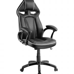 Ergovida Office Racer Chair